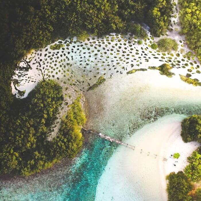 04-Cheetah-Clearing-Archipelago-Martijn-Schrijver-www-designstack-co