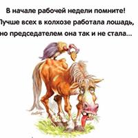 Красивыми, картинки про рабочую неделю лошади