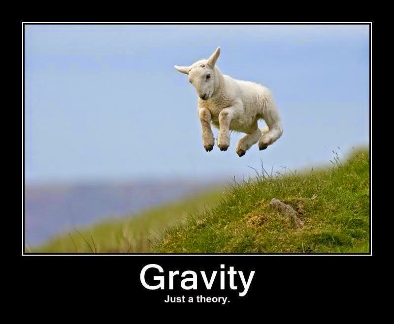 Funny Creationism Gravity Just Theory Picture