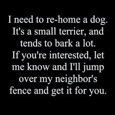 I need to rehome a dog. Small. Barks a lot. I wlll hop neighbors fence and get it for you