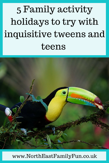 5 Family activity holidays to try with inquisitive tweens and teens