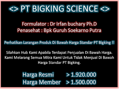 Harga Brainking Plus