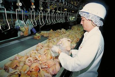 Industria de producción de alimentos