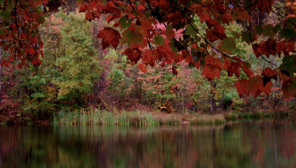 Fullscreen CSS Background Image Slideshow