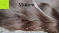 Makro Feder: Mpow® 3 in 1 Clip-On 180 Grad Fisheye Supreme + 0.65X Weitwinkel + 10X Makro-Objektiv für iPhone 6/6 Plus iPhone 5 5S 4 4S Samsung HTC (Kein Dunkel Kreis durch die Fisheye-Objektiv)