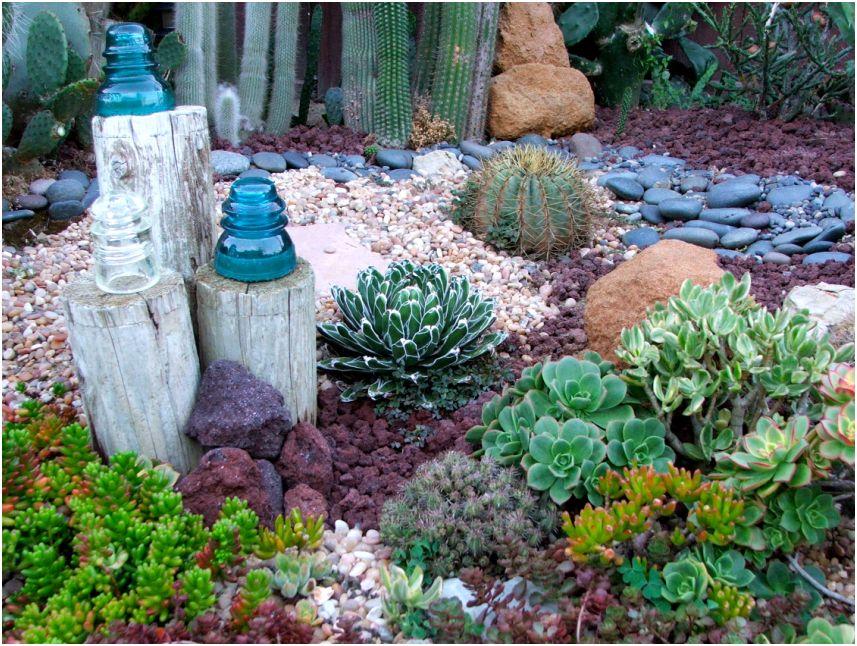 Nadia S Ocean Themed Succulent Garden In California