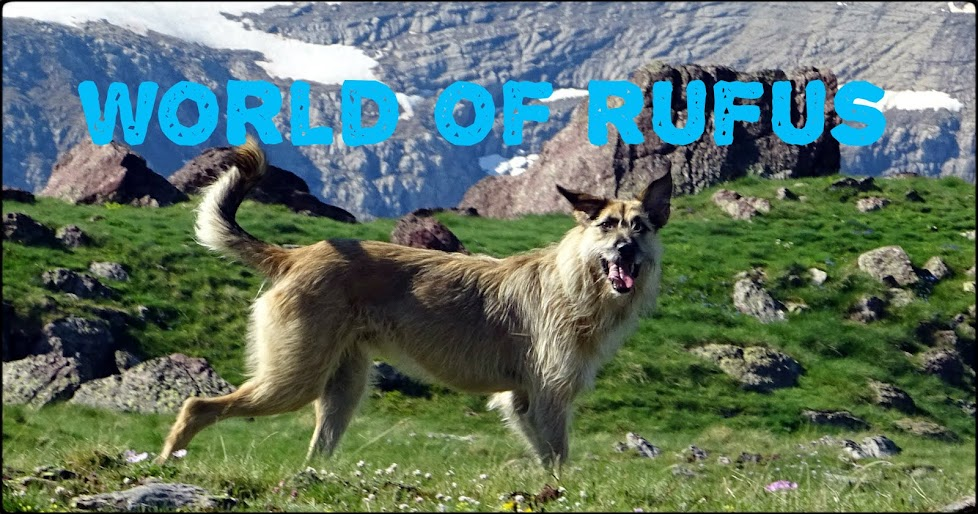 WORLD OF RUFUS