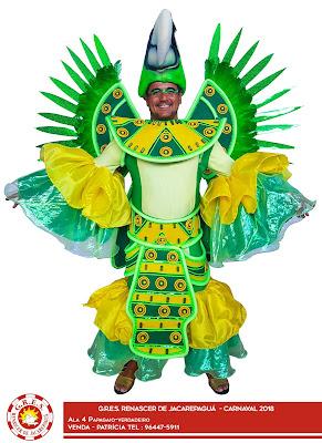 Ala Papagaio Verdadeiro - Renascer de Jacarepaguá