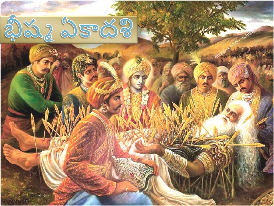 భీష్మ ఏకాదశి - Bhisma Ekadashi