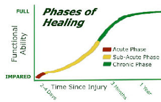 fases da cura