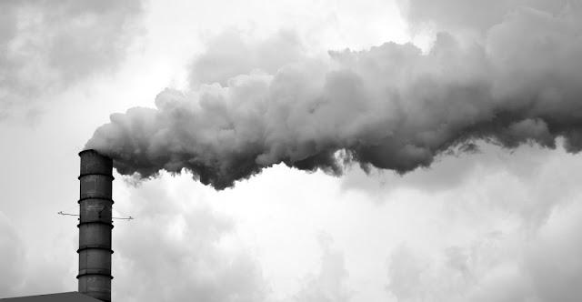 Contaminacion ambiental y biologia
