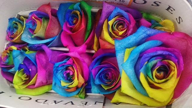 multicolor_roses