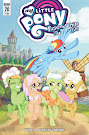 My Little Pony Friendship is Magic #70 Comic Cover A Variant