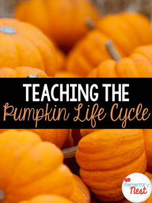 Fall Science- activities to help integrate science into your fall teaching- pumpkin life cycle ideas