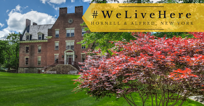 Hornell & Alfred, New York Neighborhood Info