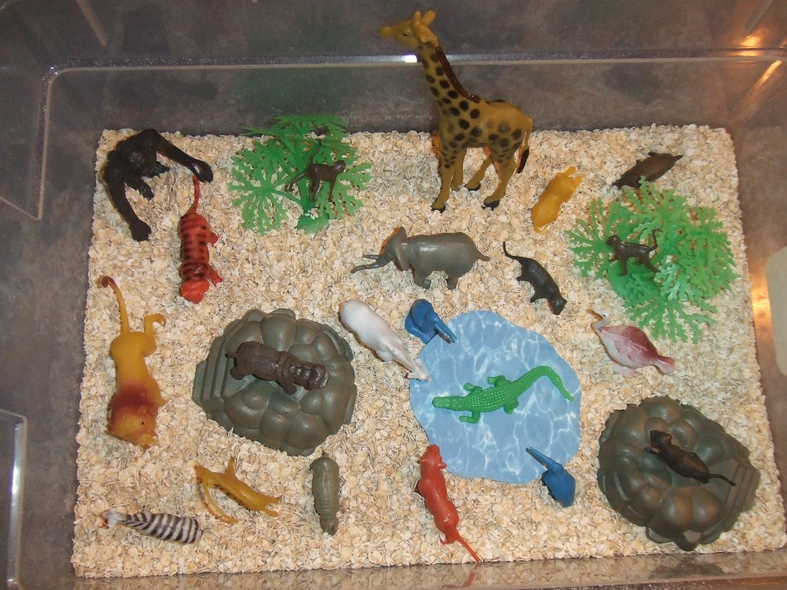 Cachey Mama S World Of Learning Jungle Sensory Bin