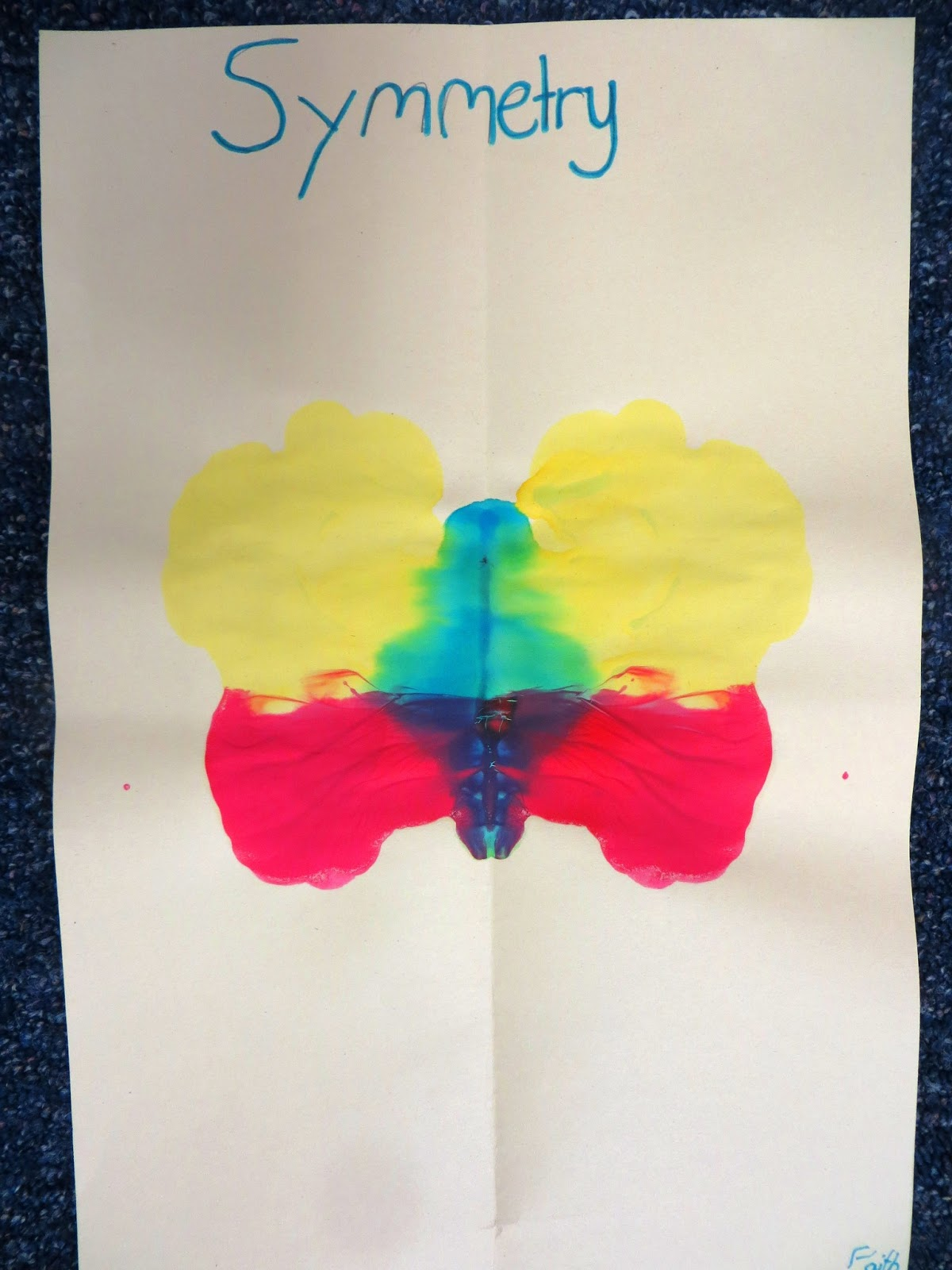 First Grade Wow Creating Symmetry And A Natural Resources Unit