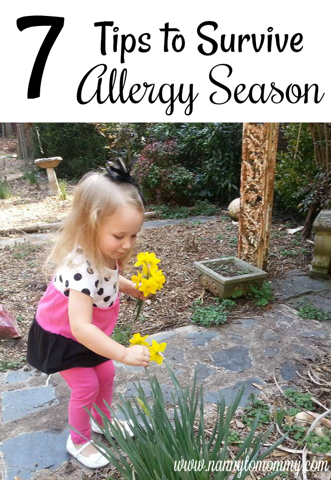 7 Tips to Survive Allergy Season