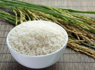 padi organik, cara menanam padi organik, cara tanam padi organik,budidaya padi organik,pertanian padi organik