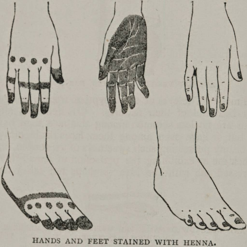 "Egyptian Henna Designs: Eshkol HaKofer: ""Plus The Cost Of The Henna"": Traces Of"