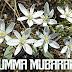 JUMMA MUBARAK MESSAGES 2019 JUMUAH MUBARAK QUOTES