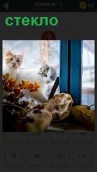 800 слов за стеклом сидят две кошки и смотрят в комнату 1 уровень
