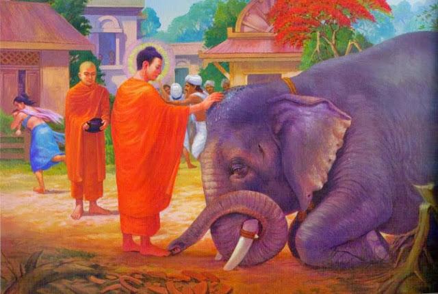 Đạo Phật Nguyên Thủy - Đường Xưa Mây Trắng - Chương 74: Tiếng rú của con voi chúa