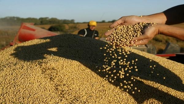 FAO: América Latina y el Caribe erradicarán el hambre en 9 años