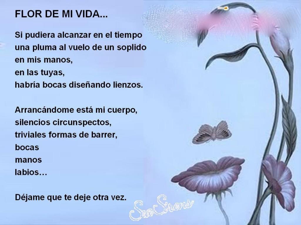 Imagenes De Amor Con Frases De Amor: Poemas De Amor