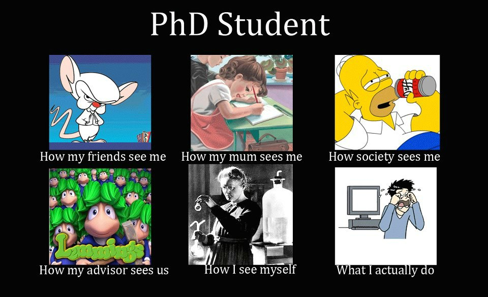 Tips Untuk Student PHD