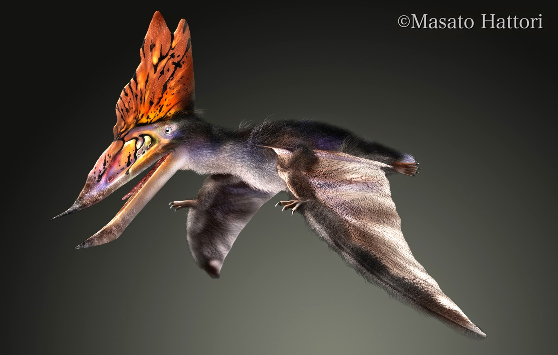 Marchan Blog: タラソドロメウス Thalassodromeus