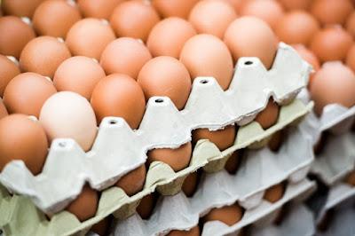 Cara Menjadi Distributor Telur Bekasi