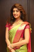 pranitha glam pics in saree-thumbnail-8