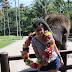 Bali #4 : Elephant Safari Park