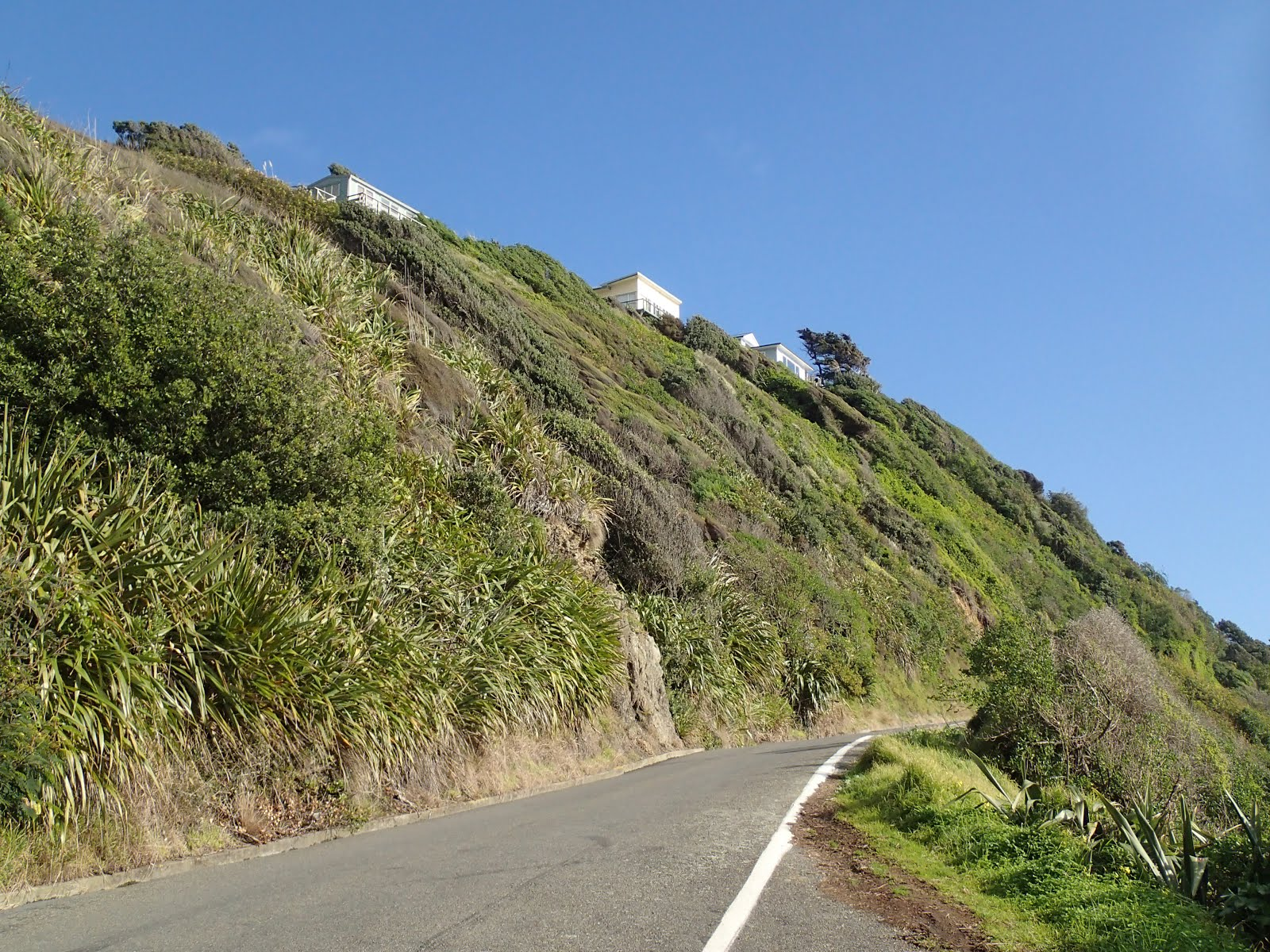 Road down to Pukerua Bay