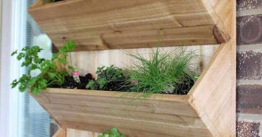 A vegetable mini home: our tips!