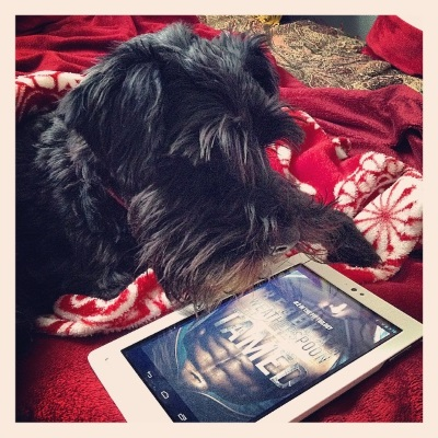 Duffy flops atop a red and white blanket, a white Kobo beside him. Its screen shows the cover of Tamed, which features the title superimposed across a Latino man's bare chest.