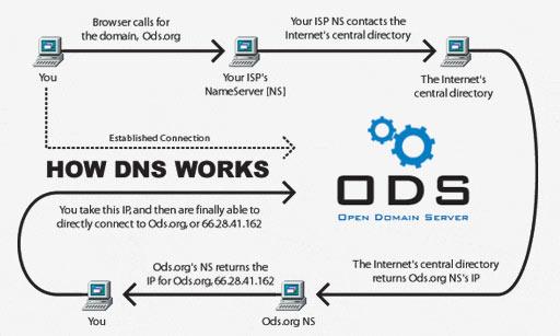 DDoS Protection Hotline