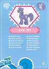 My Little Pony Wave 4 Royal Riff Blind Bag Card