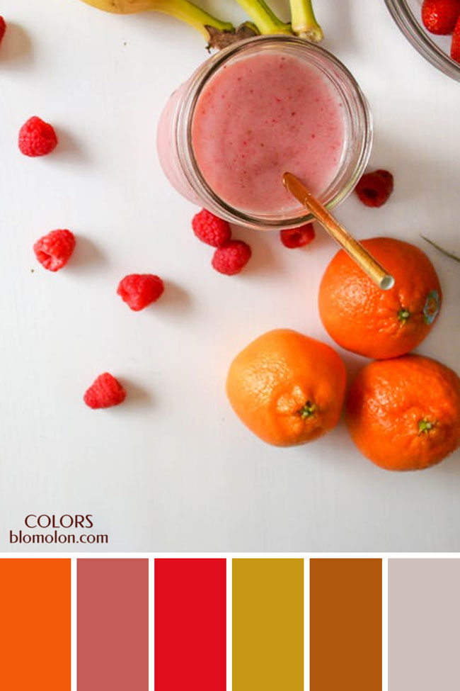 paletas_de_colores_21_variedad_de_color_1