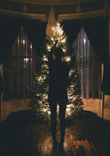 Arrumando árvore de natal