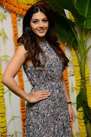 Actress Mehreen Kaur Latest 2017 Po Stills4 ~  Exclusive Celebrities Galleries.jpg