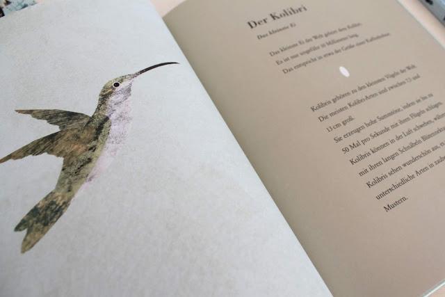 Das Ei Die schoensten Bilderbuecher fur Kinder Buchtipps Prestel Verlag Britta Teckentrupp Jules kleines Freudenhaus