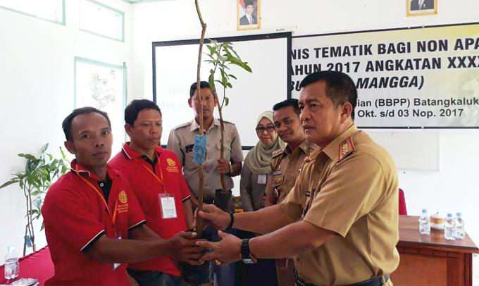 BBPP Batangkaluku Gelar Pelatihan Teknis Tematik Budidaya Mangga di Bone
