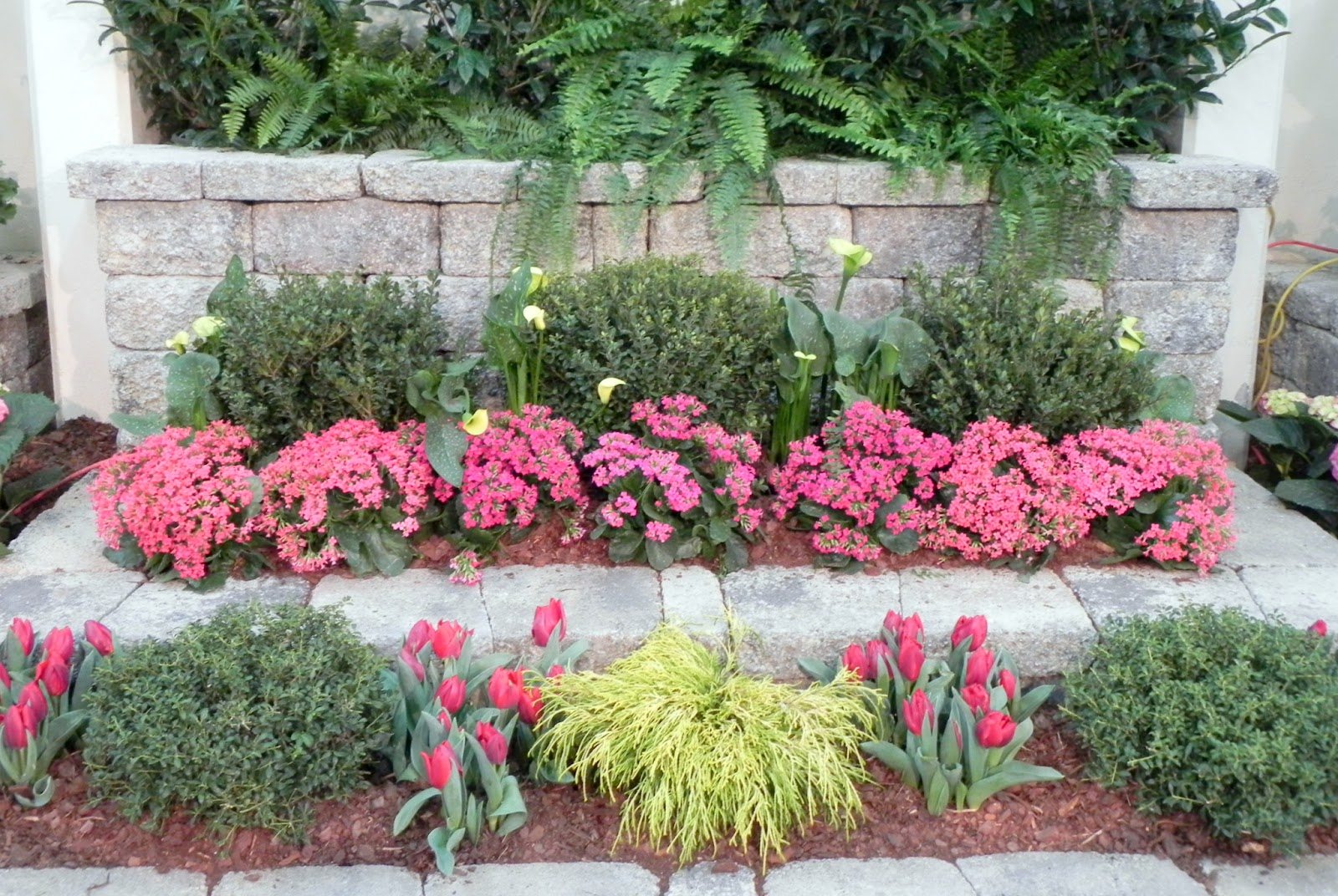 Gone Walkabout 2 Nashville Lawn And Garden Show 2017