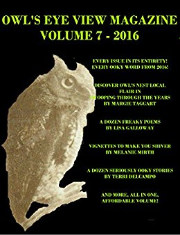OWL'S EYE VIEW MAGAZINE - VOLUME 7 - 2016 - YEAR END BUNDLE