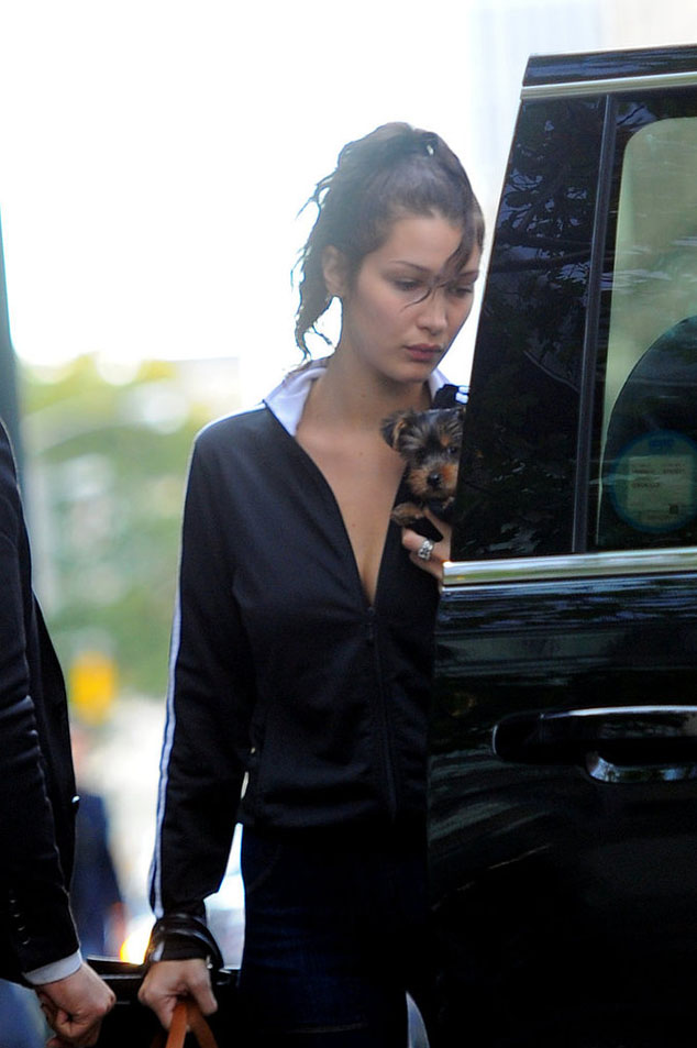 Bella Hadid and The Weeknd were once again spotted together in New York.