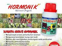 Zat Pengatur Tumbuh Hormonik - Membantu Meningkatkan Hasil Panen Getah Karet