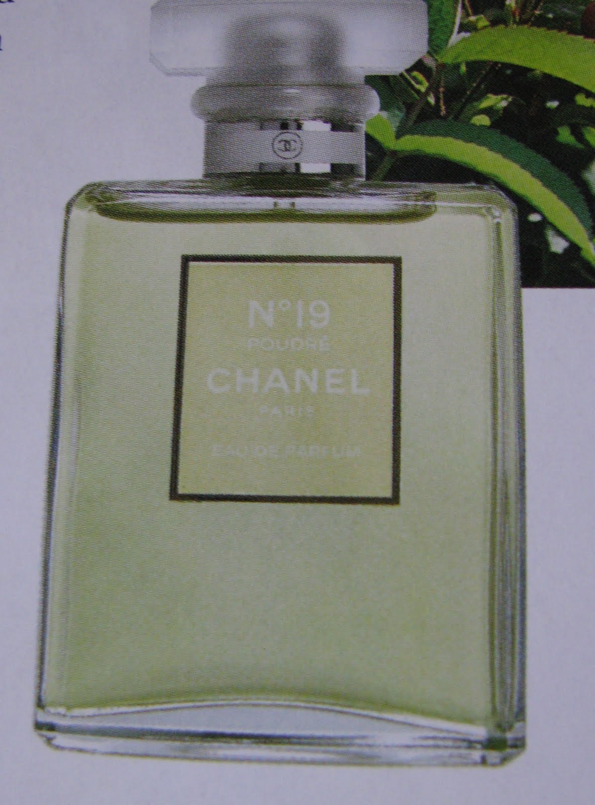 e5b638fa9d Perfume Shrine: Chanel to Launch Les Exclusifs Jersey & Chanel No.19 ...