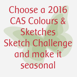 http://cascoloursandsketches.blogspot.co.uk/2016/12/weekly-winners-seasonal-colours.html